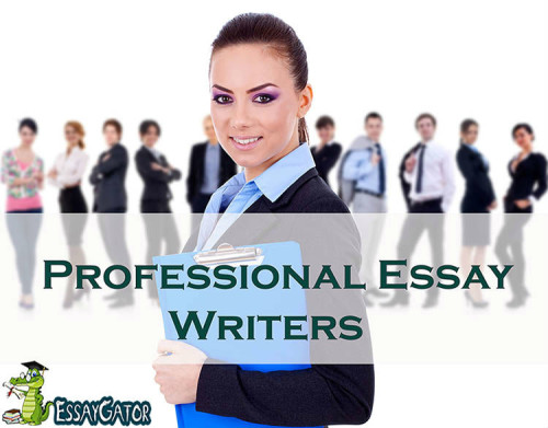 essay writers in usa